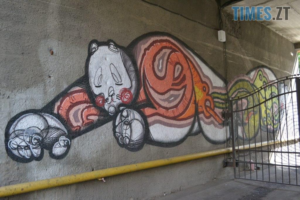 09fb9392 12cd 4b38 9aaa 99b163a3dd6f 1024x683 - Хулігани малюють, поліція - бездіє: історія занедбаності житомирських фасадів та парканів
