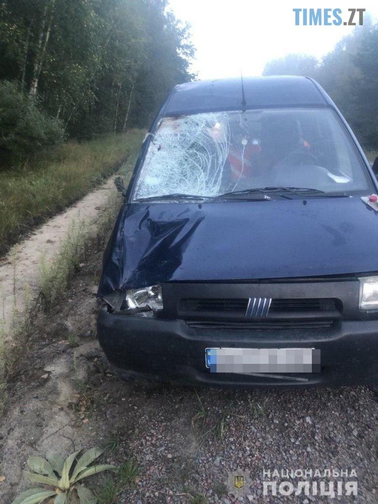 10 15 23 768x1024 - На Житомирщині водій на смерть збив пішохода-пенсіонера