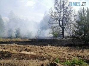 2 300x225 - В Овруцькому районі надзвичайники ліквідували загоряння сухостою, від якого спалахнули чотири будівлі