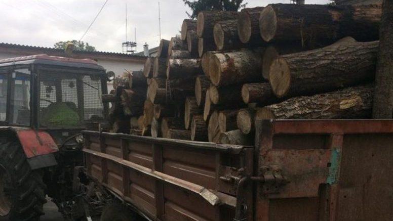 3 1 e1598531403106 776x437 - «Не фортануло»: поліція затримала двох жителів Житомирщини, які хотіли незаконно вивезти деревину