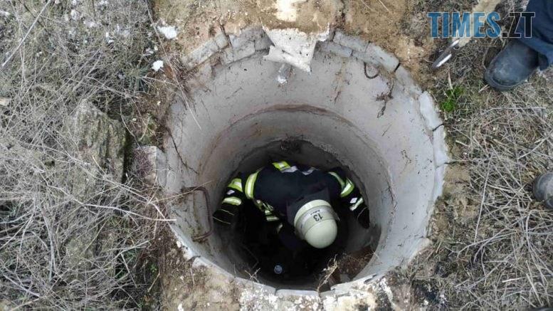 """412375 777x437 - У Житомирі рятувальники вивільнили з колодязя застряглу і налякану """"Муху"""""""