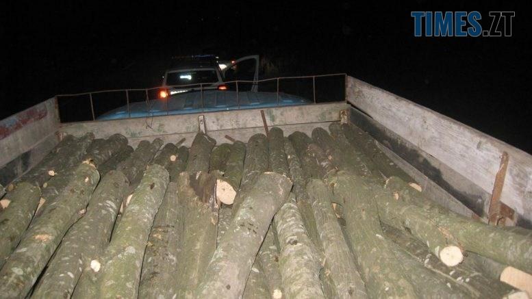 """IMG 5855  777x437 - Під час рейду Житомирщиною правоохоронці двічі виявляли автомобілі з """"лівим"""" лісом (ФОТО)"""