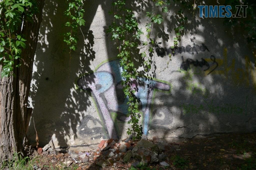 c5f0703a a710 49ec 969c 9c5e1e61b83f 1024x683 - Хулігани малюють, поліція - бездіє: історія занедбаності житомирських фасадів та парканів