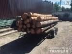 index3  150x113 - У Лугинському районі копи затримали вантажівку із деревиною на фейкових документах