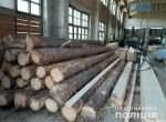 pylorama 2  150x110 - У Коростишеві бізнесмен облаштував пилораму з необлікованою лісопродукцією