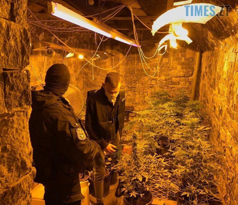 119076589 3295060293916437 9076702164285442752 o e1599638307416 - У Житомирській області затримали наркодилера, який вдома облаштував плантацію з марихуаною (ФОТО)