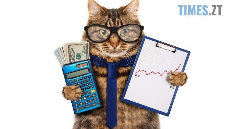 Cats Money Glasses 492643 3840x2400 777x437 - Долар підріс, євро знизився: курс валют та вартість пального 3 вересня