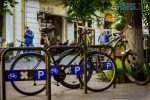DSC 0364 150x100 - «Обіцяного чекають 3 роки?»: поки міська влада бездіє, житомиряни самотужки підготували план розмітки для велосипедистів (ФОТО)