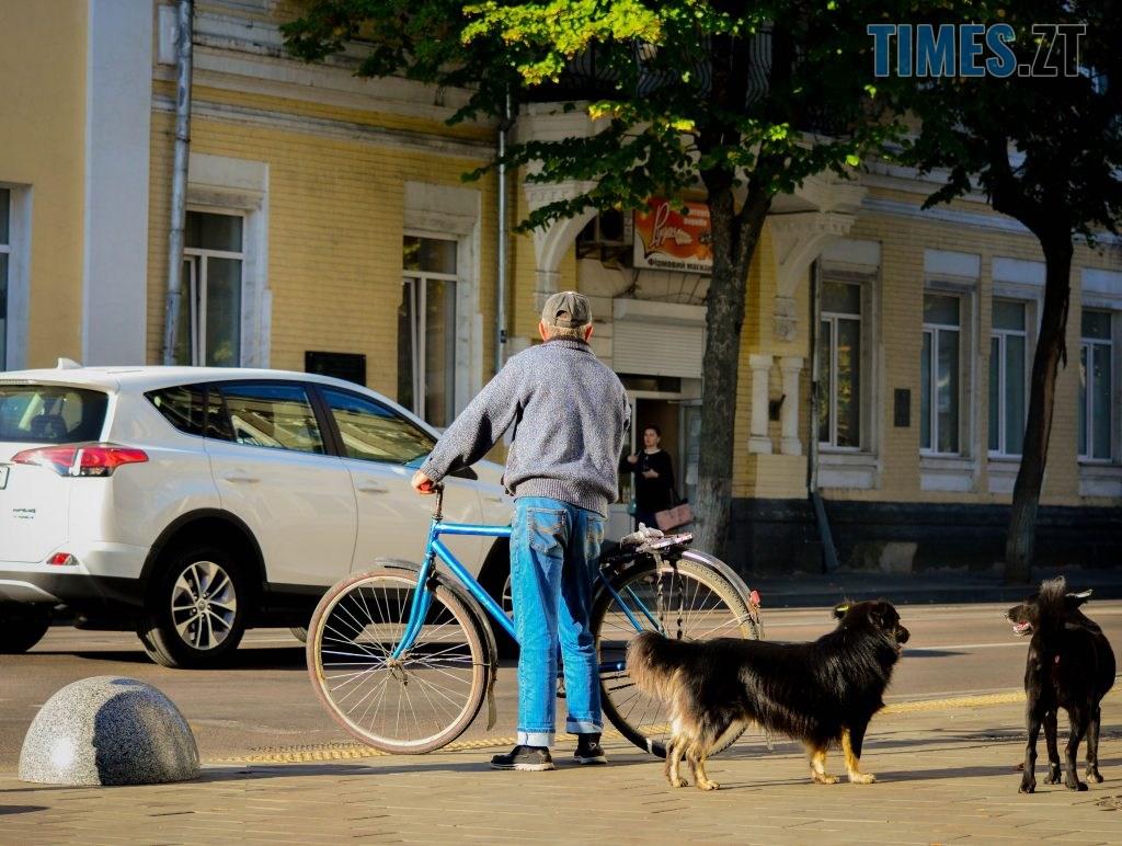 DSC 0383 1024x772 - «Обіцяного чекають 3 роки?»: поки міська влада бездіє, житомиряни самотужки підготували план розмітки для велосипедистів (ФОТО)