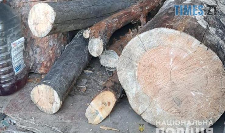 Screenshot 7 3 739x437 - У двох районах Житомирської області виявили незаконні оборудки із деревиною