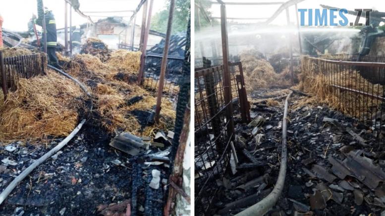 Screenshot 8 777x437 - Житомирський район: на території дитячого будинку-інтернату загорівся старий свинарник