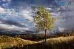 dsc8791 razgonia osennie tuchi 150x100 - Синоптики пророкують похолодання та різку зміну погоди на прийдешні вихідні