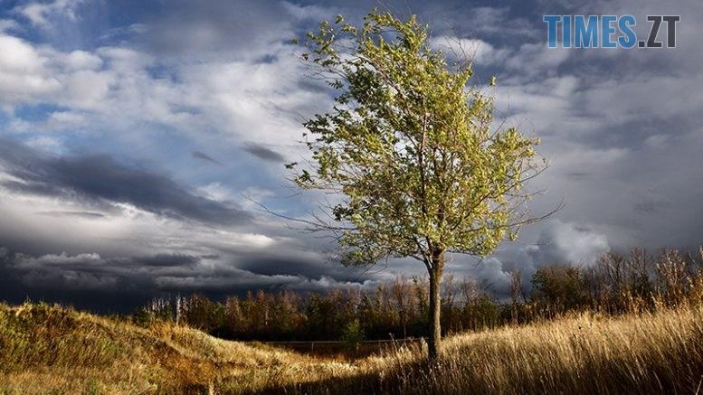dsc8791 razgonia osennie tuchi 777x437 - Синоптики пророкують похолодання та різку зміну погоди на прийдешні вихідні
