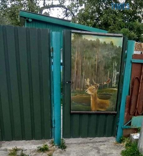 podviria3 - У селі під Житомиром власник будинку перетворив його на  галерею просто неба (ФОТО)