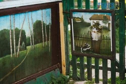 podviria4 - У селі під Житомиром власник будинку перетворив його на  галерею просто неба (ФОТО)