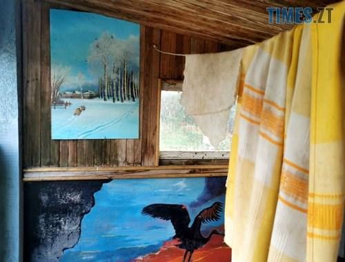 podviria6 - У селі під Житомиром власник будинку перетворив його на  галерею просто неба (ФОТО)