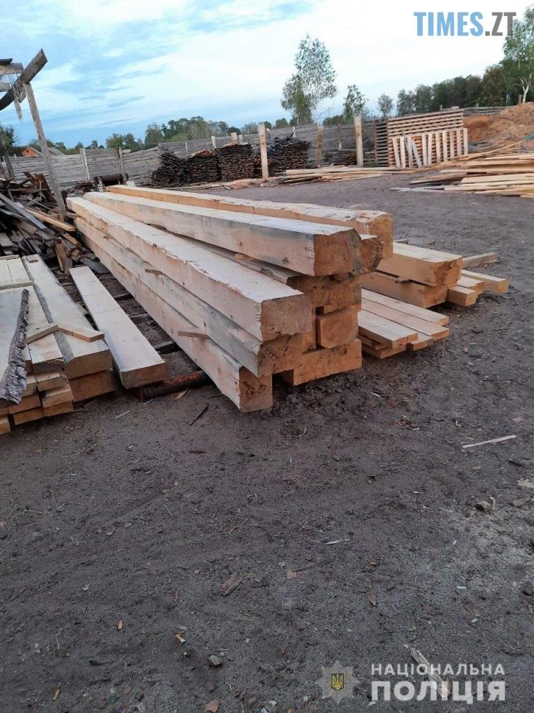 pylorama 7 768x1024 - На Житомирщині викрили пилораму з незаконною деревиною