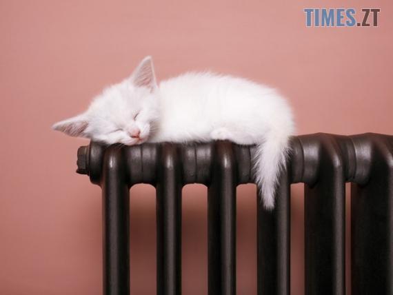 3a0ce35213b2bf2f38a58bfe48d7433770b6b0ae - Сьогодні у домівках житомирян з`явиться тепло