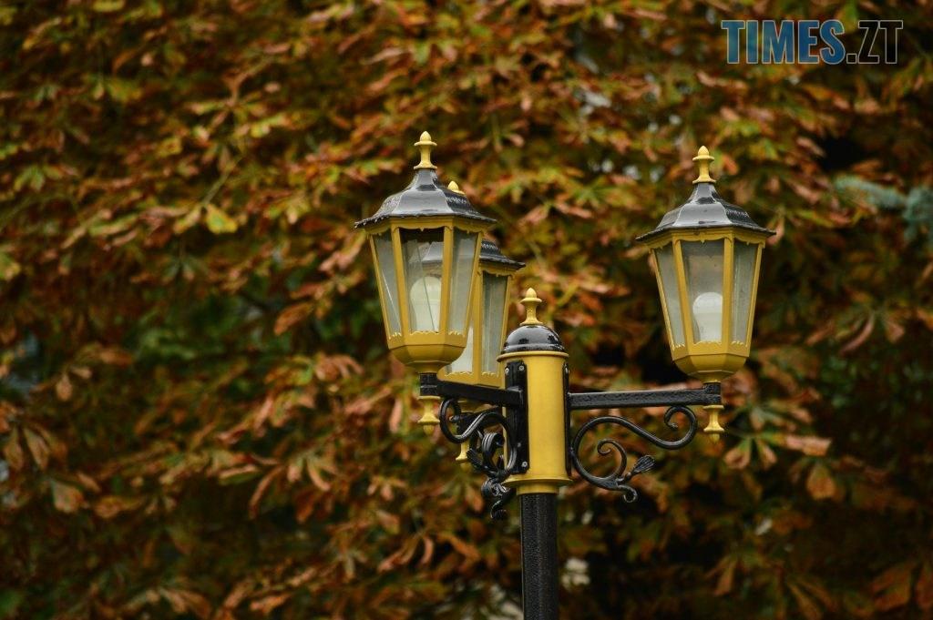 DSC 1206 1024x681 - В Житомир прийшла справжня осінь (ФОТО)