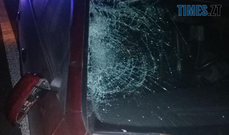 Screenshot 14 1 741x437 - У Житомирському районі трапилася смертельна аварія: загинув 40-річний пішохід (ФОТО)