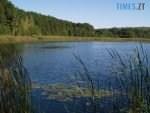 blog 00000017 150x113 - Овруцький район: в одній з водойм знайшли тіло старенької, котра кілька днів тому пішла по гриби