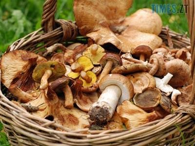 00071976 - В одному з районів Житомирщини до лікарні через отруєння грибами потрапило подружжя