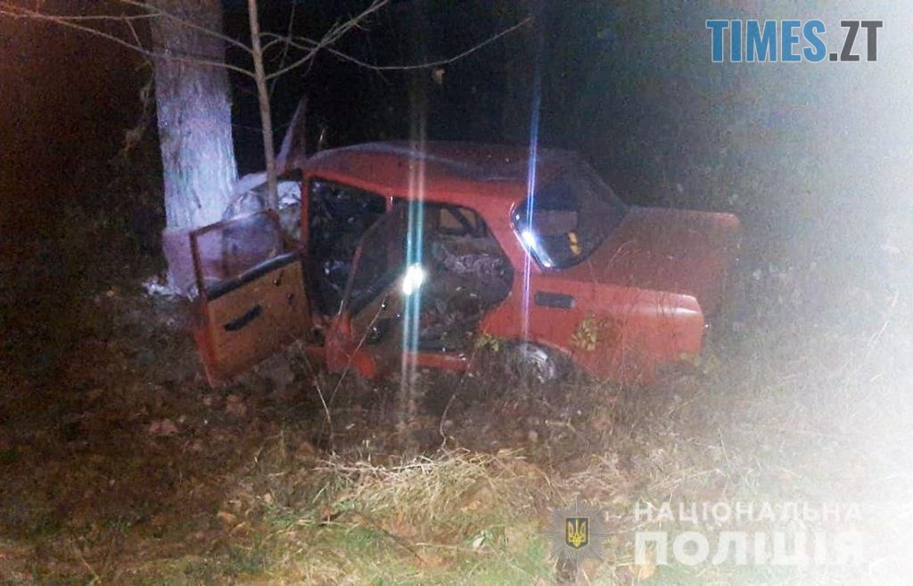 28666873 1024x658 - На Житомирщині легковик злетів у кювет,  врізався в дерево та спалахнув (ФОТО)