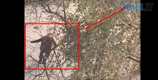 Screenshot 4 7 - У сусідній області чоловік зірвав зубами чеку гранати, боєприпас вибухнув і відірвав йому руку (ВІДЕО 18+)