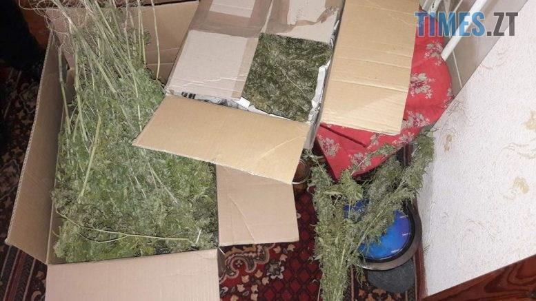 15 36 482 1 777x437 - Житомирщина: під час обшуку в приватному домоволодінні поліція виявили понад 2 кг конопель
