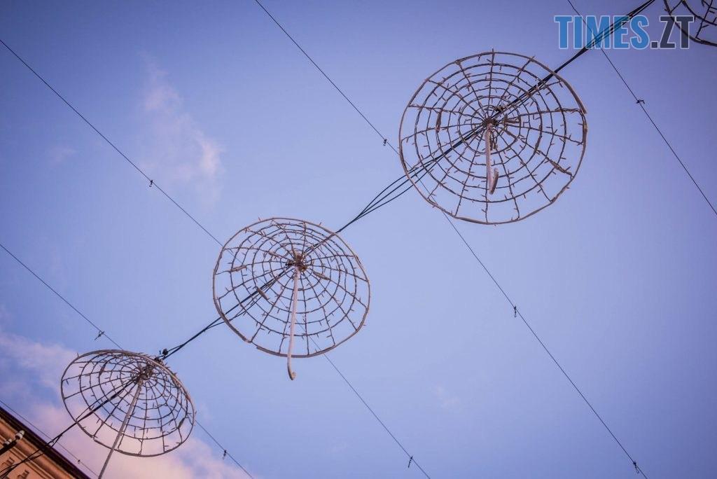 DSC 0337 1024x684 - Житомир засяяв новорічними парасолями за 192 тисячі грн (ФОТО)