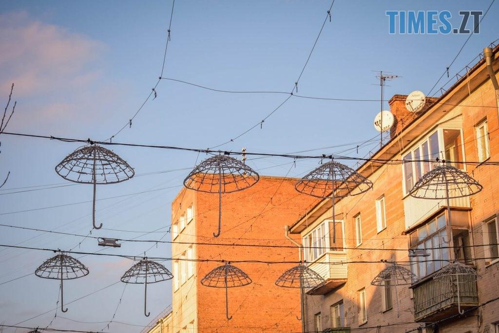 DSC 0341 1024x684 - Житомир засяяв новорічними парасолями за 192 тисячі грн (ФОТО)