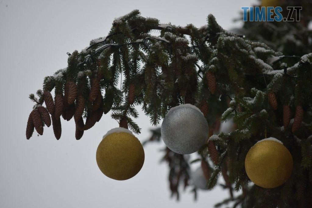 DSC 0722 1024x684 - Житомир «накрив» сніг (ФОТО)