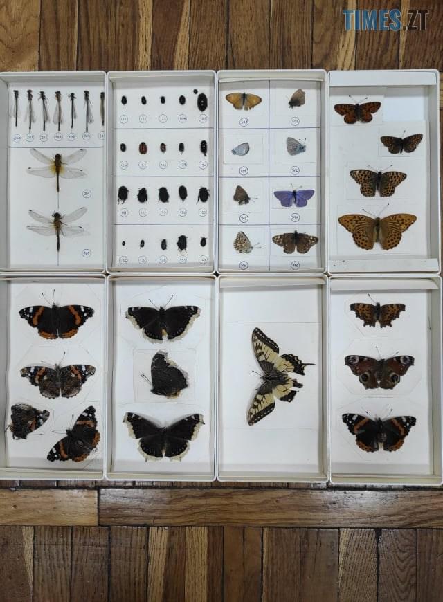136155489 2798229717109457 2255830248539572750 n - Житомирський краєзнавчий музей поповнився новими експонатами (ФОТО)