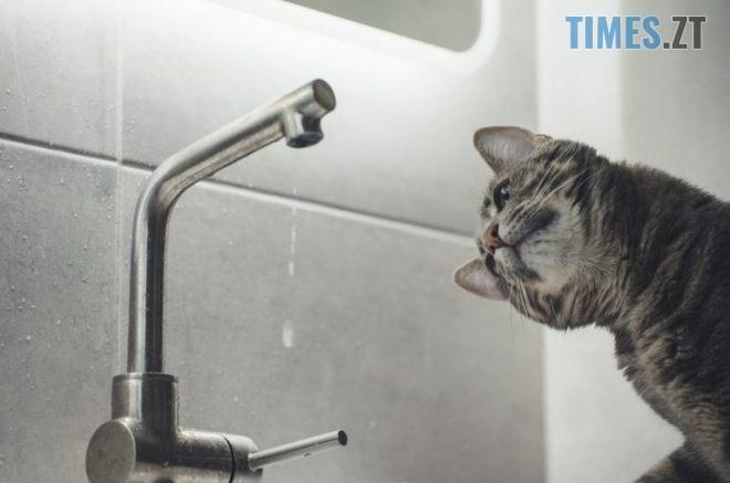 vidklyuchennya vody kit unsplash 22.07.2020 768x512 1 660x440 1 660x437 - Кілька вулиць обласного центру перебуватимуть без водопостачання упродовж доби